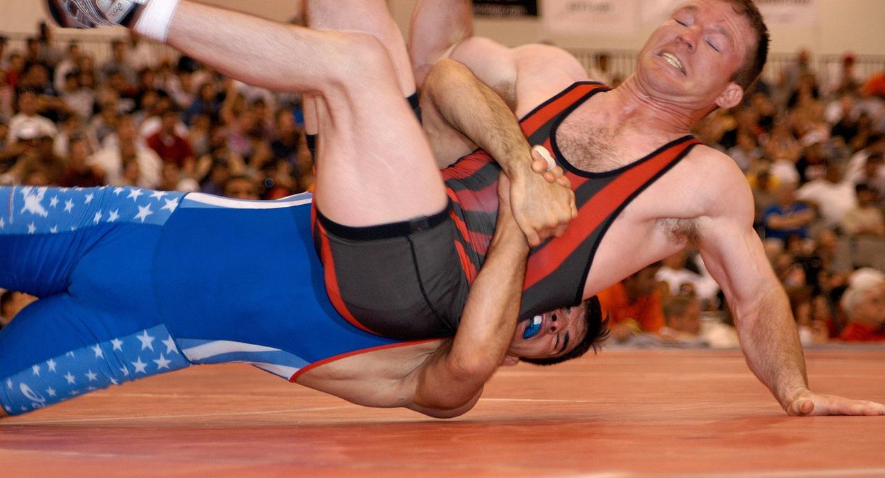 wrestlers-79547_1280