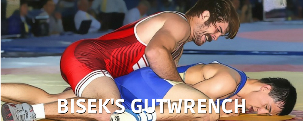 Andy Bisek Gutwrench
