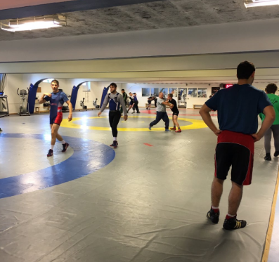 USA Greco Roman training with Sweden